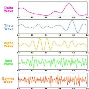 types of brainwaves