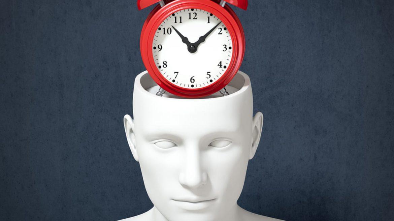 Circadian rhythm clock